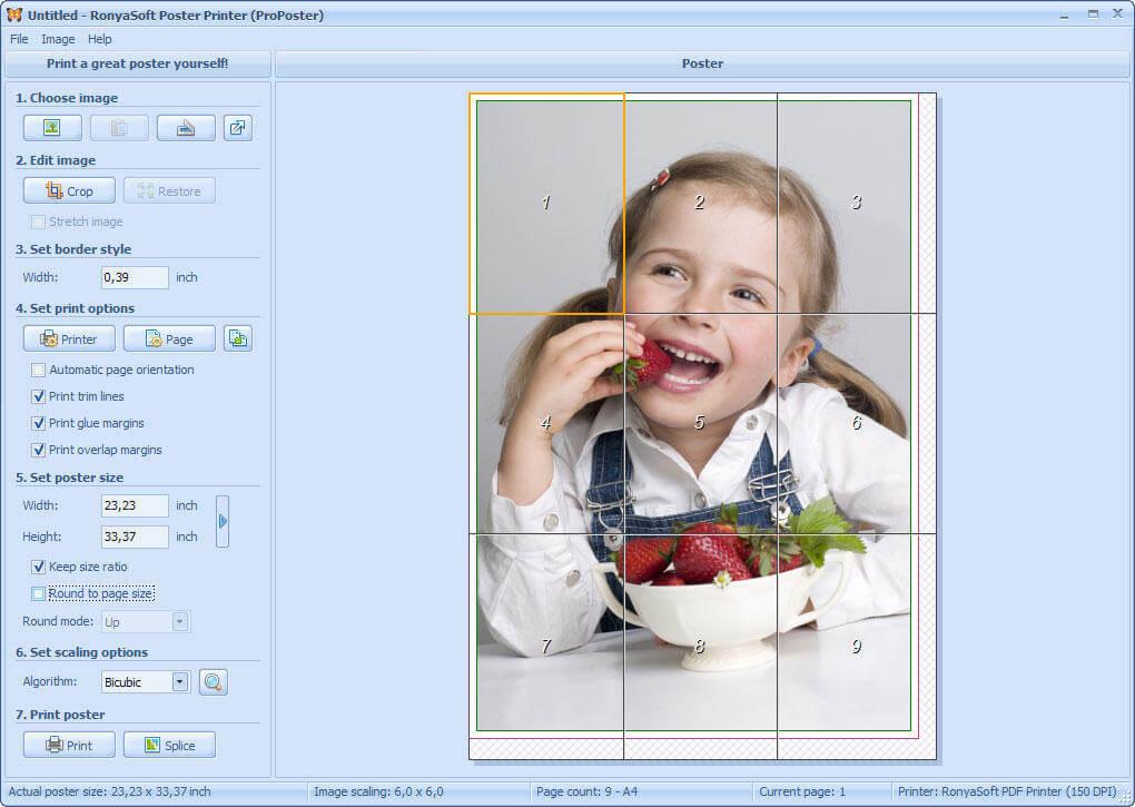 RonyaSoft Poster Printer 3.2.20 free crack