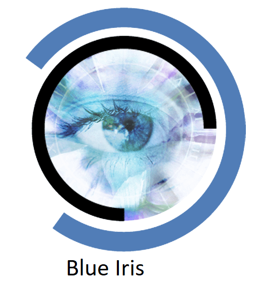 Blue Iris 5.3.3.9 Crack Free Download Latest Version 2021