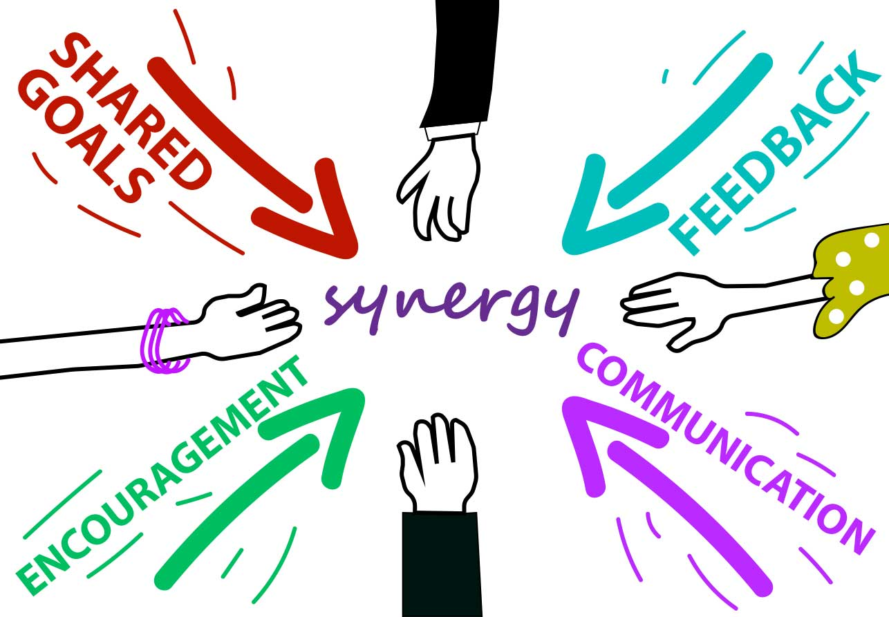 Synergy latest version crack